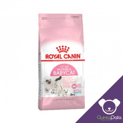 ROYAL CANIN BABY CAT X 400 GR